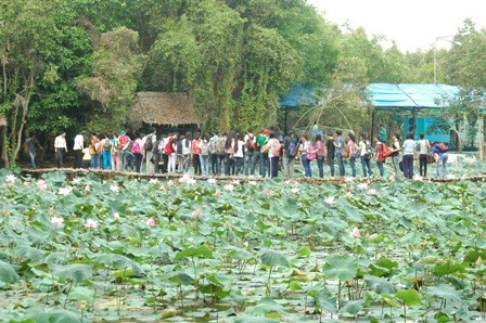 dong thap bolsters community-based tourism hinh 0